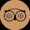 logo-triadv
